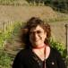 """Amorim, il tappo di sughero questo """"conosciuto"""" amico del vino"""