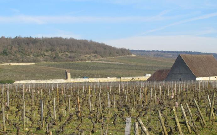 Les Grands Jours de Bourgogne 2016 – Immersi totalmente nel Pinot Nero